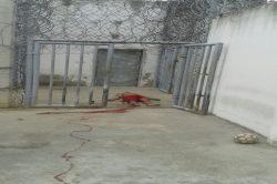 grande-rebeliao-detento-tobias-barreto09052016 (6)