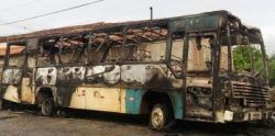 onibus-348x172