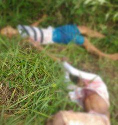 corpos_sao_encontrados_em_matagal_orobo
